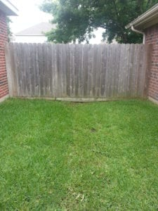 Fence Cleaning and Restoration in Cypress Tx